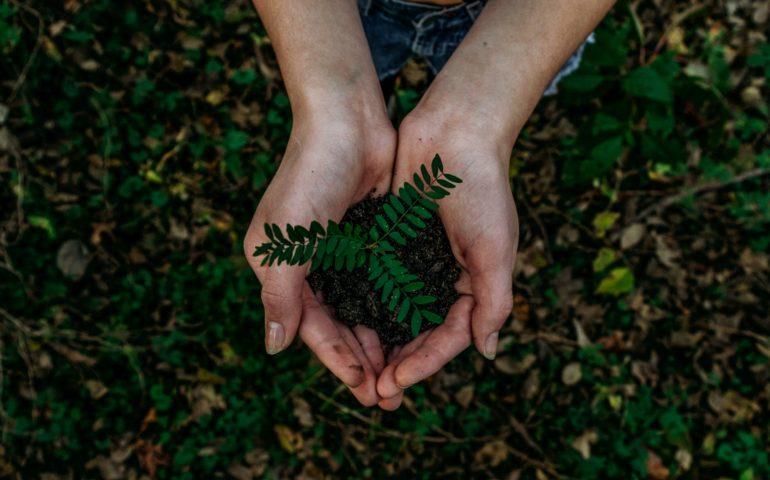 Conseils écologiques